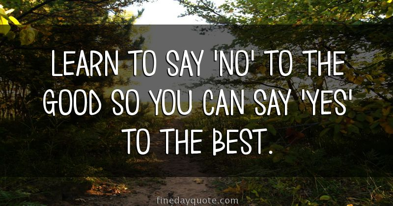 learn to say no to the good so you can say yes to the best